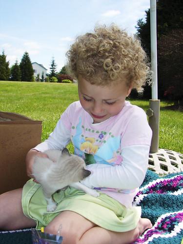 Really loves kitties