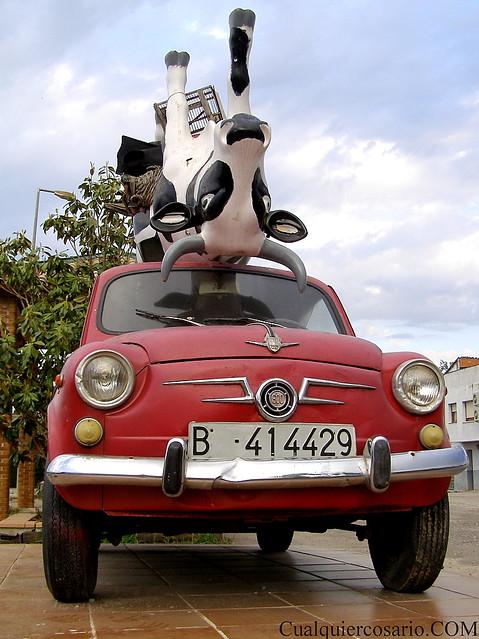 La vaca viajera