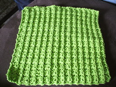 boxy dishcloth back