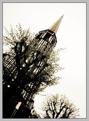 Kirche (sulamith.sallmann) Tags: church high europa religion kirche poland polska size polen tall gdansk danzig gros pommern pol hoch lenght trjmiasto christentum lnge gdanskoliwa kaschubien sulamithsallmann dreistadt kaschubei grse