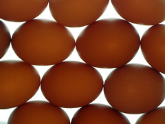 Egg Pattern (BlueRidgeKitties) Tags: backlight pattern eggs lighttable ccbyncsa canonpowershotsx10is