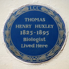 Photo of Thomas Henry Huxley blue plaque