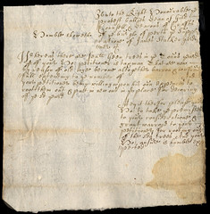 Petition to root out decayed trees,1687 (P&KC Archive) Tags: woods business glorious revolution archives council environment horticulture taxation ecsochistory