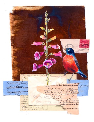Robin & Foxglove Print