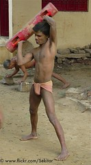 Kushti Training at Tulsi Ghat Akhara, Varanasi (Sekitar) Tags: boy shirtless india man male training wrestling indian strong wrestler tulsi pradesh benares ghat uttar akhara sekitar kusthi kushti kusti pehlwani shirtlessvaranasi