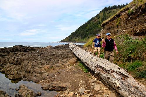 Oregon coast (2)