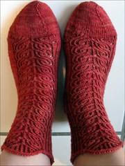 Rusty Dahlia Socks #2