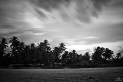 Explored - The Irony In Motion... - MPL 7 (2k Photography) Tags: longexposure sea india beach canon landscape sand explore series karnataka kaup manipal 2k neutraldensityfilter explored nd110 bwnd110 1855mmis ~2|{~ pushpdeeppandey manipal10