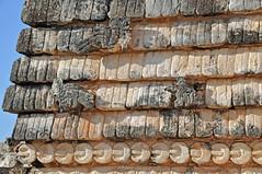 travel holiday mexico site nikon ruins maya room yucatan free mayan dennis jarvis uxmal 2010 d300 iamcanadian 18200vr 70300mmvr dennisjarvis quadrangleofthebirds archer10 dennisgjarvis