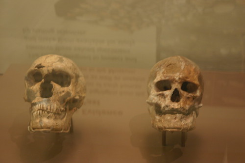 Treasured Neanderthal and Original Cro-Magnon
