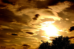 Burned Clouds (LaKry*) Tags: trees light sunset shadow sky sun yellow alberi clouds tramonto nuvole streetlamp ombre giallo cielo sole luce burned lamione bruciate