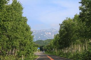 白樺街道(國道966號)