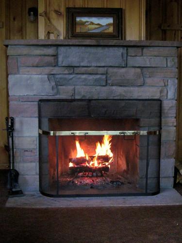 Fireplace 20100614