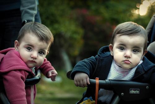 フリー写真素材, 人物, 子供, 赤ちゃん, 兄弟・姉妹, 双子,