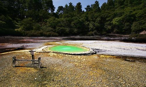 Oyster Pool at Wai-o-Tapu