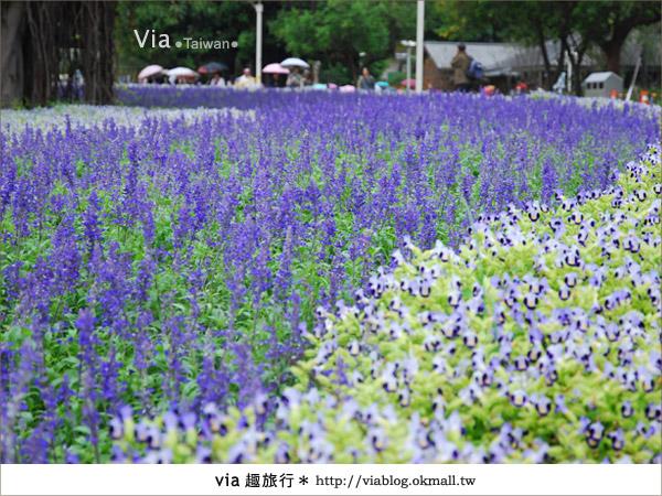 【花博一日遊】via遊花博(上)~從圓山園區開始玩花博!34
