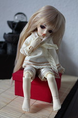 Luts Honey Delf Pudding NS (uk.neko) Tags: ns pudding honey tiny hdf bjd luts delf yosd
