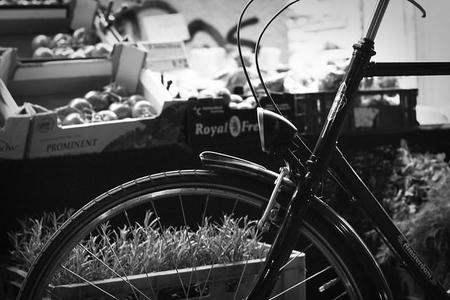 70/365 : Bike