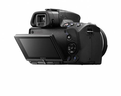 SLT-A55 Tilt-LCD