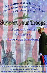 Happy Veterans Day! (Hayley Stell Photography) Tags: usmc america photoshop army freedom support military navy patriotic government marines statueofliberty airforce usaf troops marinecorps mtrushmore redwhiteblue veterans usarmy