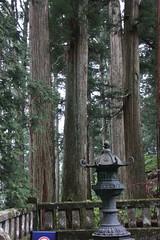 IMG_2612 (normafincher) Tags: japan nikko nikkonationalpark