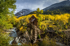 Crystal Mill during peak fall color (NickSouvall) Tags: famous crystal mill abandoned fall foliage trees aspen aspens tree yellow gold green color colorful nature landscape view views landscapes snow storm stormy weather snowing snowy snowstorm contrast white blue sky clouds marble colorado day photo wild wilderness photography picture adventure travel explore