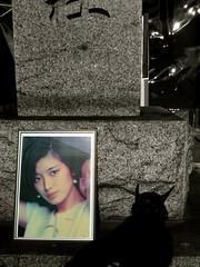 "Legend Diva ""Momoe Yamaguchi"""