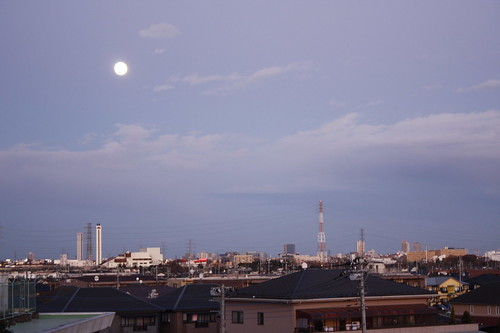 モノレール高幡不動駅から見えた月