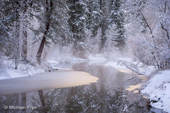 20216 (Michael Frye) Tags: california winter usa mist snow cold tree water river flow nationalpark solitude peaceful serenity delicate dreamlike sierranevada tranquil freshness colorphoto mercedriver damncool yosemitenp horizontalphoto updatecollection ucreleased