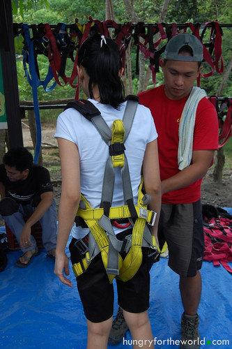 Being harnessed