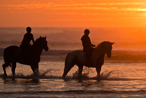 Two female equestrians prance their ponies for the Photomorrobay photo group