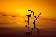 Adapting to a Changing Climate (muha...) Tags: travel reflection male water bicycle silhouette yellow island nikon transport maldives adapting muha yellowsignal changingclimate d700 dsc8568 muhaphotos nikond700 adaptingtoachangingclimate