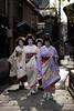 Hatsuyori 2010 #7 (Onihide) Tags: japan kyoto maiko geiko tama kotoha gionkobu tsuruha mayuha manaha onihide 初寄り inoueyachyo hatsuyori