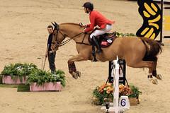Weltklasse-Springturnier (Robi33) Tags: sport schweiz basel elite reiter trophy pferd schiedsrichter pruefung springen zuschauer uebungen reiterin reitsport weltklasse pferdesport stjakobshalle