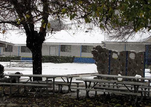 January Snow-1