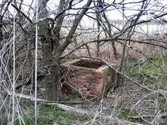 old well near covington texas (plumaluna07@sbcglobal.net) Tags: old well