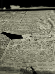 TORN (Cry) Tags: blackandwhite bw lost newspaper hamilton worldwarone ww1 1916 britishsoldiers 164thinfantry