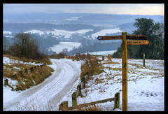 Newlands Corner