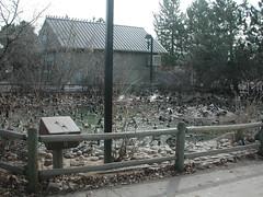 Zoo of Denver  DSCN0130_1