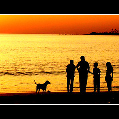 ALL TOGETHER (DEVENDRA PAL(AWAY)) Tags: new trip travel family blue winter friends sunset summer vacation sky people music india art beach water festival night fun photography photo photos pal nayure holoiday mywinners platinumphoto theunforgettablepictures thesuperbmasterpiece theoriginalgoldseal devdevendra