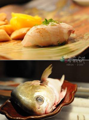 紅杉魚 握壽司