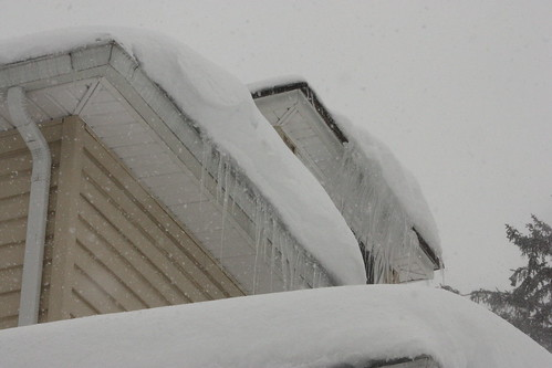 blizzardfeb10 328