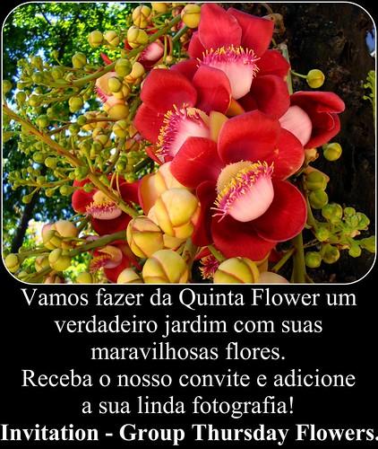 "SELO CONVITE DO GRUPO ""QUINTA FLOWER""."