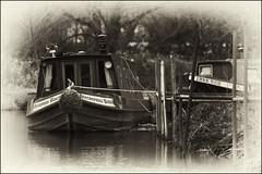 Hieronymus Bosch (strussler) Tags: england bw monochrome canon eos nb surrey sw navigation narrowboat godalming waterway hieronymusbosch riverwey ef100400l niksilverefexpro 5dmkii dontforgetneda