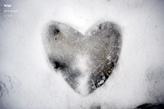 happy Valentine's Day (taige2007) Tags: snow heart valentinesday