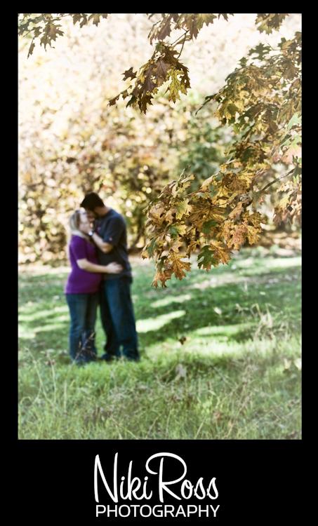 leaves-tree