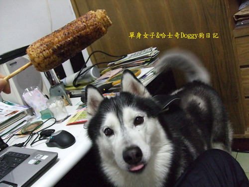 2010-01-23-066