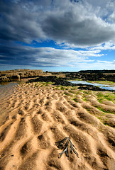 Kingsbarns Beach (Charlotte Brett Photography) Tags: sea beach scotland fife kingsbarns