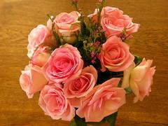 Bouquet of Roses (boisebluebird) Tags: flowers plants plant art spring sandstone boise mussels boisemovieman michaeltoolson boisebluebird boisebluebirdcom httpwwwboisebluebirdcom boiselandscaping boisegardener
