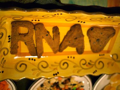 직접(?) 구운 RNA 쿠키~